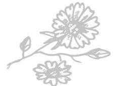 Blume-1-230